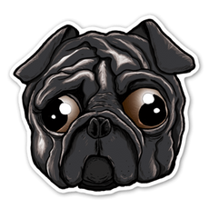 Black Sad Eye Pug Sticker