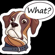 Boxer Dog What Sticker