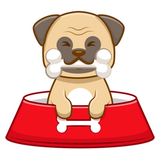 Pug Puppy Eating Bone Sticker