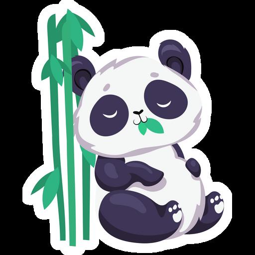 Sleeping Cute Panda Sticker