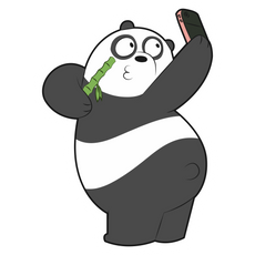 We Bare Bears Panda Selfie Sticker