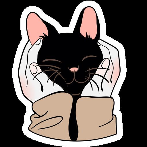 Black Kitten in Human Palms Sticker