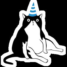 Cat in a Birthday Hat Sticker