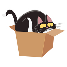 Cute Black Cat in Box Sticker