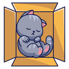 Cute Cat Sleeping in Box Sticker