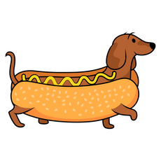 Hot Dog Dachshund Sticker