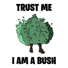 Fortnite Trust Me I Am a Bush