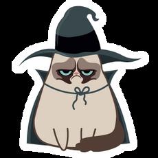 Grumpy Cat Witch