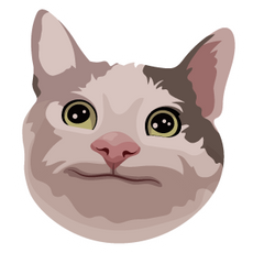 Polite Cat Meme Sticker