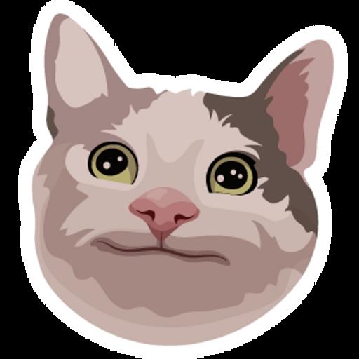 Polite Cat Meme Sticker