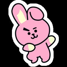 BTS BT21 Cooky Jungkook Sticker