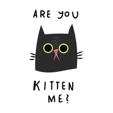 Are You Kitten Me Sticker