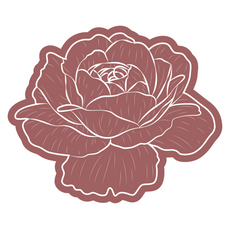 Beautiful Rose Sticker
