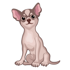 Chihuahua Puppy Sticker