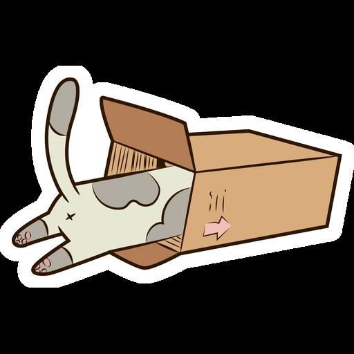 Cat in the box Sticker