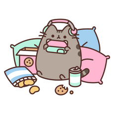Pusheen I'm Busy Sticker