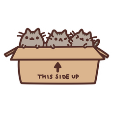 Pusheen Kittens in Box Sticker