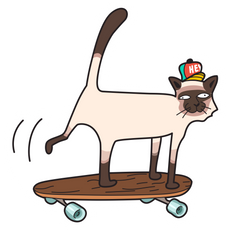 Cat on a Skateboard Sticker