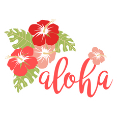Aloha Hibiscus Flowers Sticker